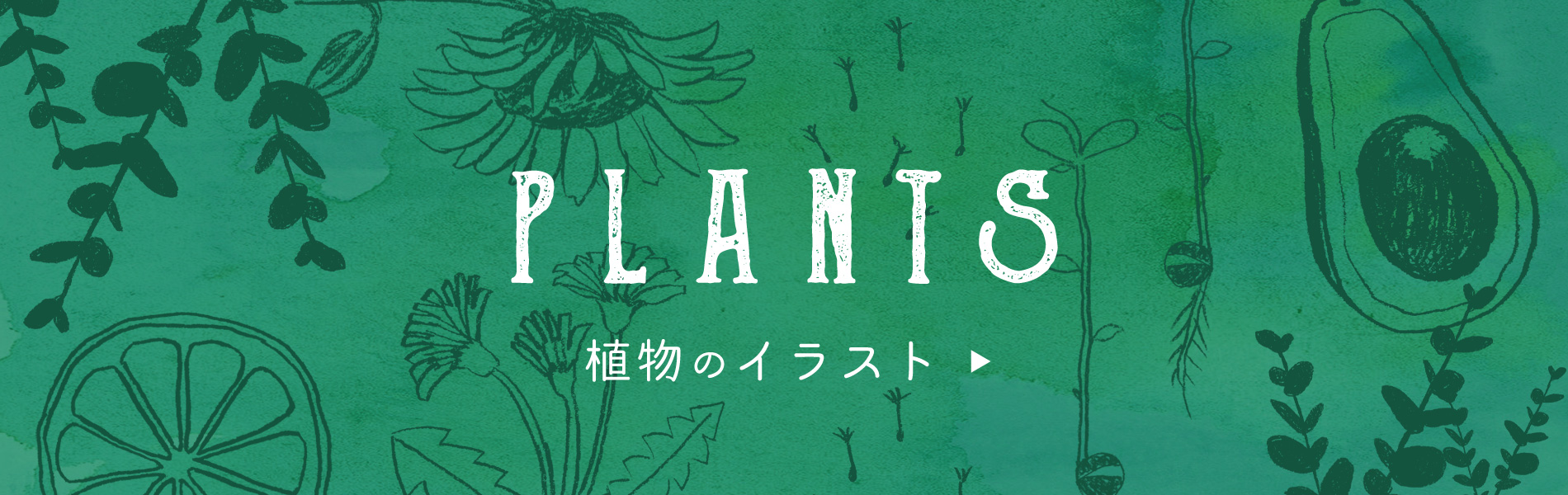 植物のイラストフリー素材